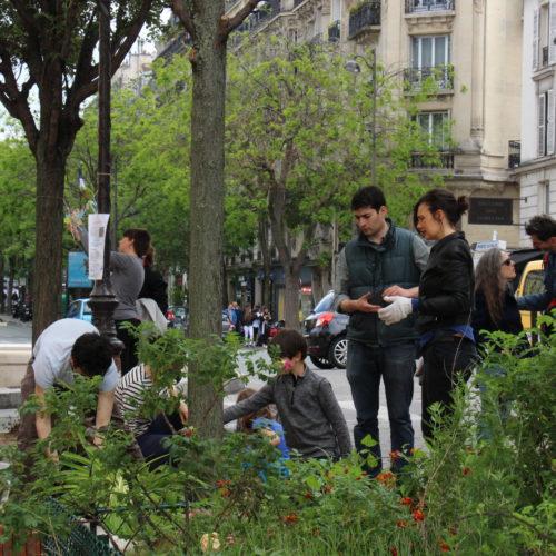 Végétalisation urbaine -rue de Bazeilles