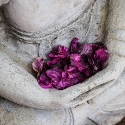 Mindfulness Méditation Pleine Conscience Espace Le Moulin